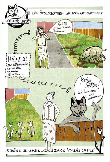 cartoon: der Wolf als Landschaftspfleger, Fole 1 mit Oma Rosa Kapp und ihren Blumen
