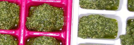 Pesto n Eiswürfelbehältern portioniert